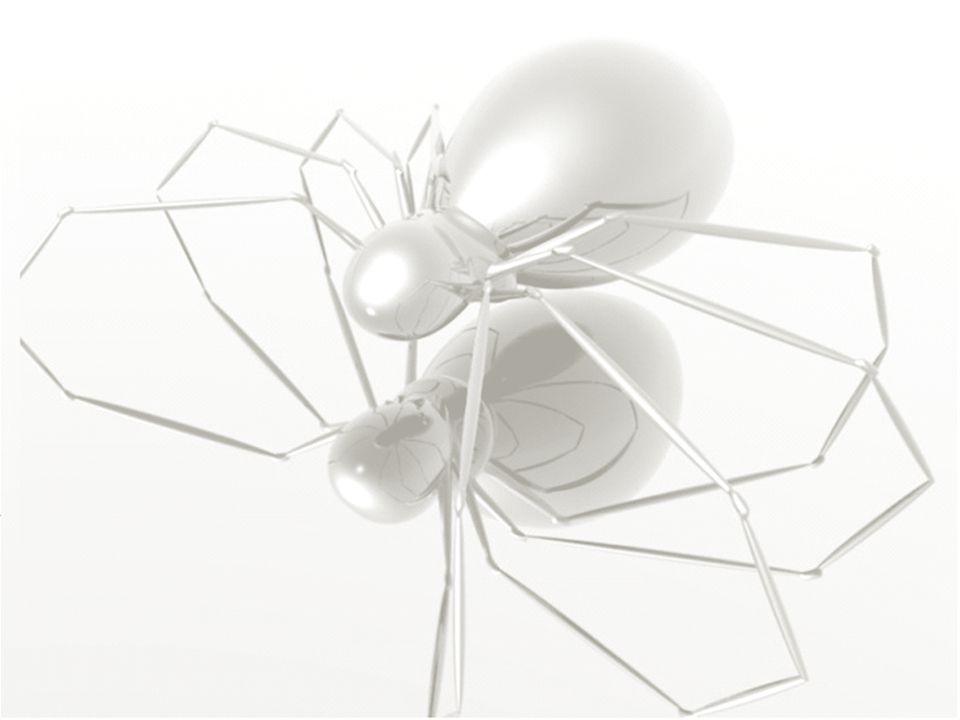 22 © The Spider Team – PMI R.E.P.
