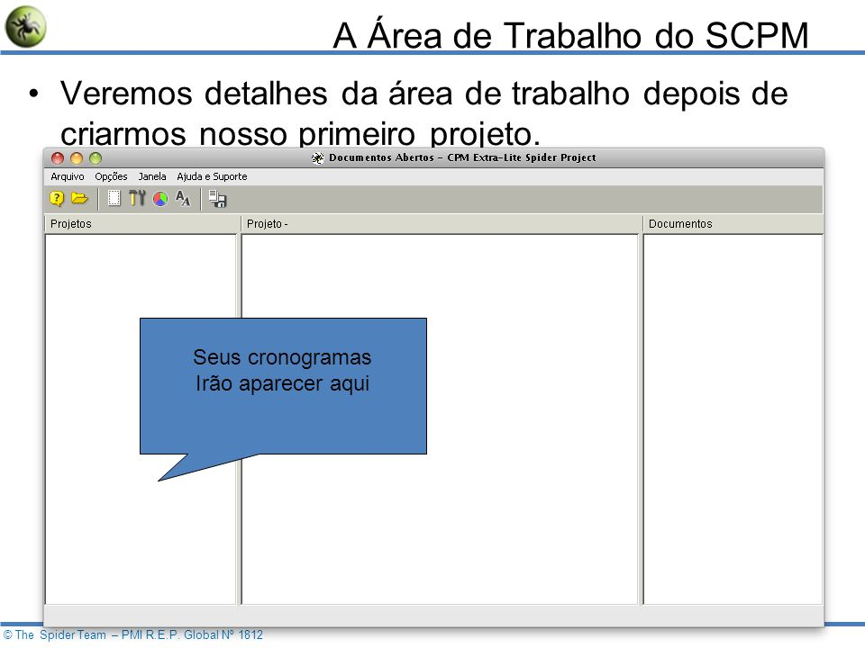 19 © The Spider Team – PMI R.E.P.