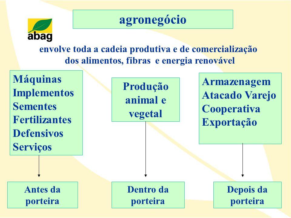 Máquinas Implementos Sementes Fertilizantes Defensivos Serviços Produção animal e vegetal Armazenagem Atacado Varejo Cooperativa Exportação agronegóci