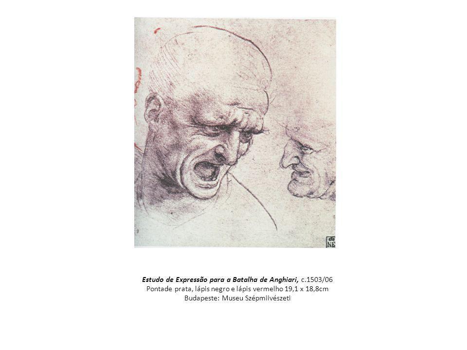 Estudo de Expressão para a Batalha de Anghiari, c.1503/06 Pontade prata, lápis negro e lápis vermelho 19,1 x 18,8cm Budapeste: Museu Szépmiivészeti