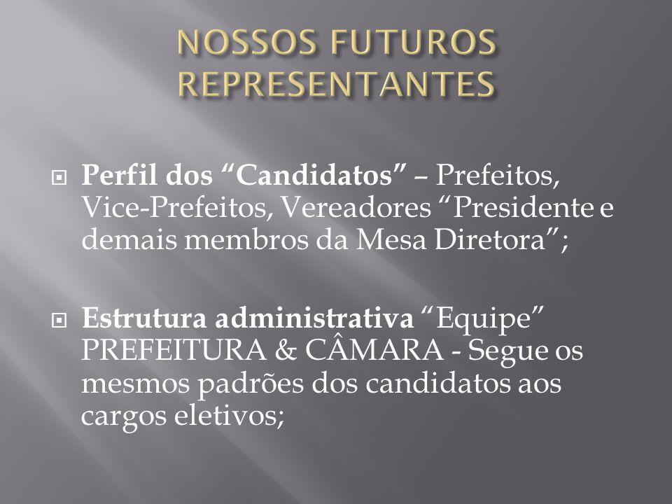 """ Perfil dos """"Candidatos"""" – Prefeitos, Vice-Prefeitos, Vereadores """"Presidente e demais membros da Mesa Diretora"""";  Estrutura administrativa """"Equipe"""""""