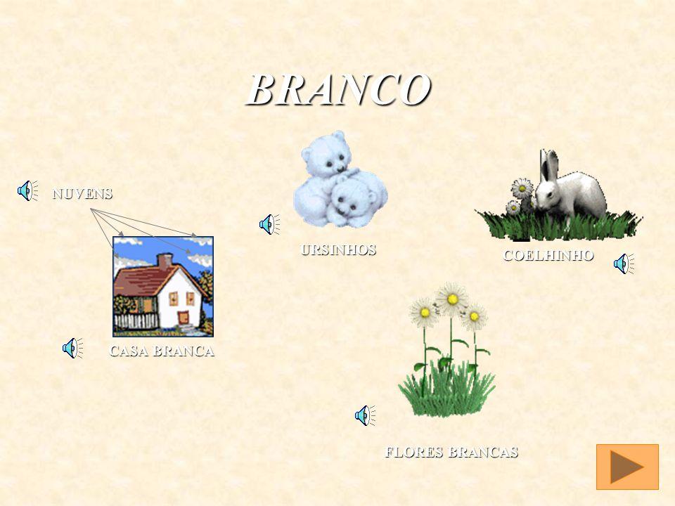 BRANCO BRAN CO - BRANCO