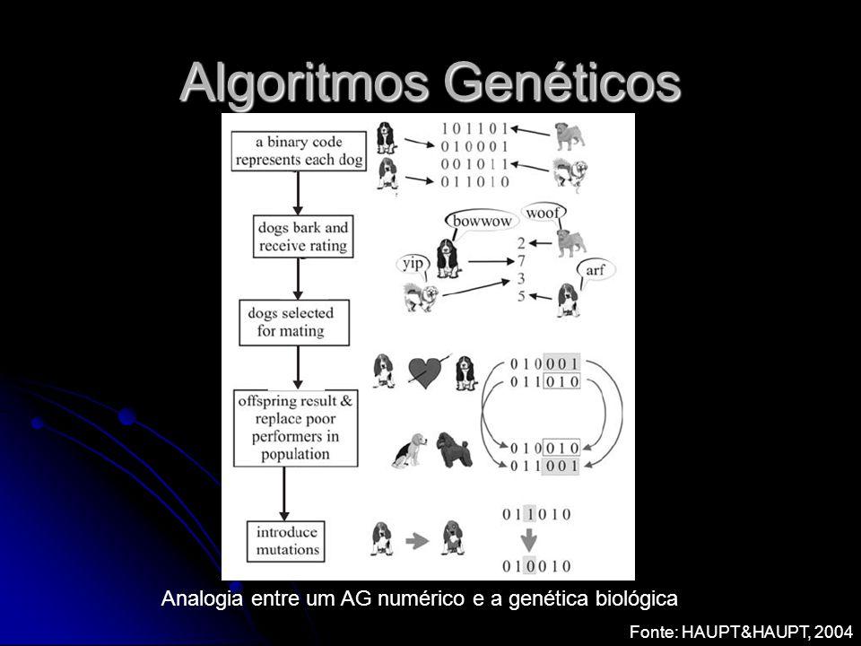 Algoritmos Genéticos Fonte: HAUPT&HAUPT, 2004 Analogia entre um AG numérico e a genética biológica