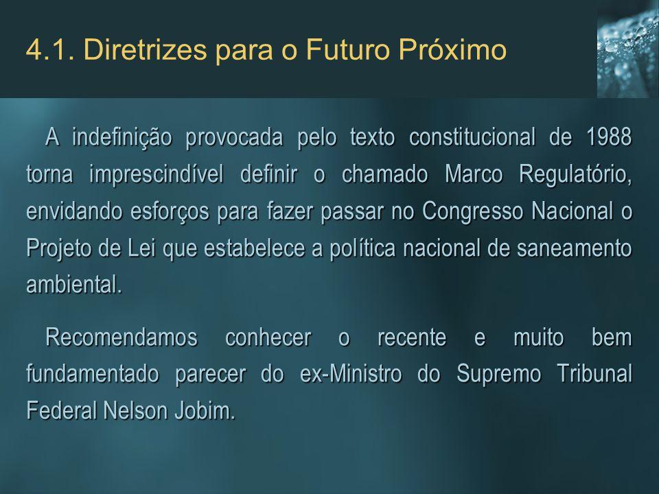 4.1. Diretrizes para o Futuro Próximo A indefinição provocada pelo texto constitucional de 1988 torna imprescindível definir o chamado Marco Regulatór