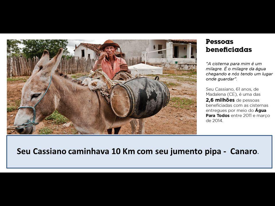Seu Cassiano caminhava 10 Km com seu jumento pipa - Canaro.