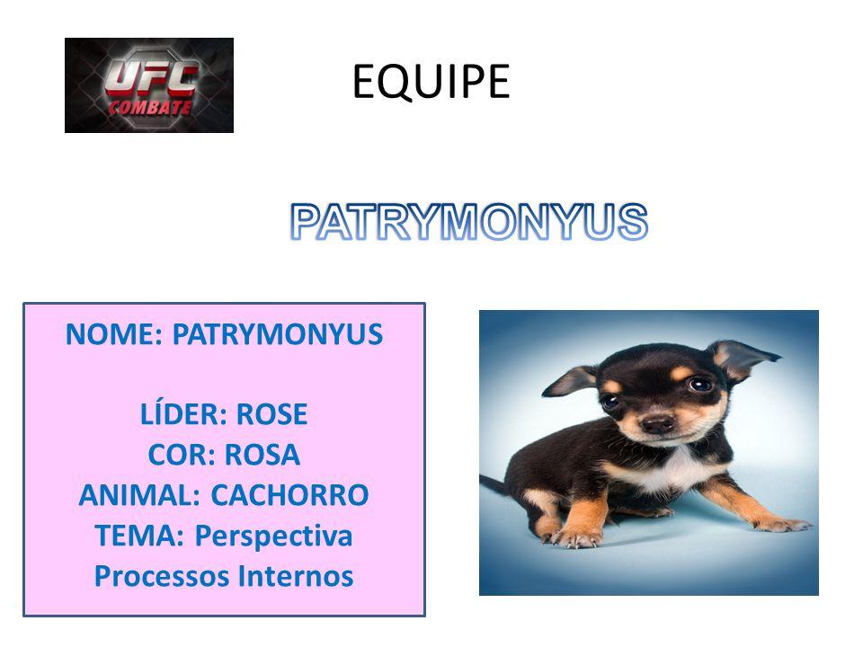 EQUIPE NOME: PATRYMONYUS LÍDER: ROSE COR: ROSA ANIMAL: CACHORRO TEMA: Perspectiva Processos Internos