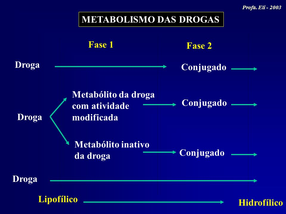 METABOLISMO DAS DROGAS Fase 1 Fase 2 Droga Conjugado Droga Conjugado Metabólito da droga com atividade modificada Metabólito inativo da droga Lipofíli