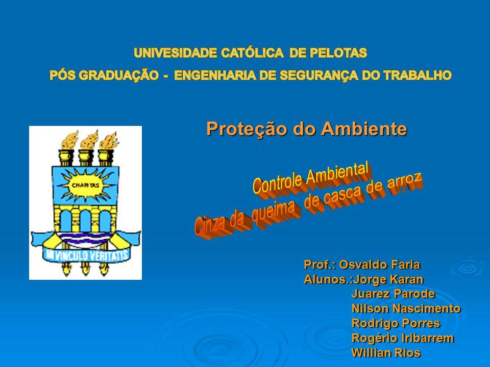 Proteção do Ambiente Prof.: Osvaldo Faria Alunos.:Jorge Karan Juarez Parode Juarez Parode Nilson Nascimento Nilson Nascimento Rodrigo Porres Rodrigo P