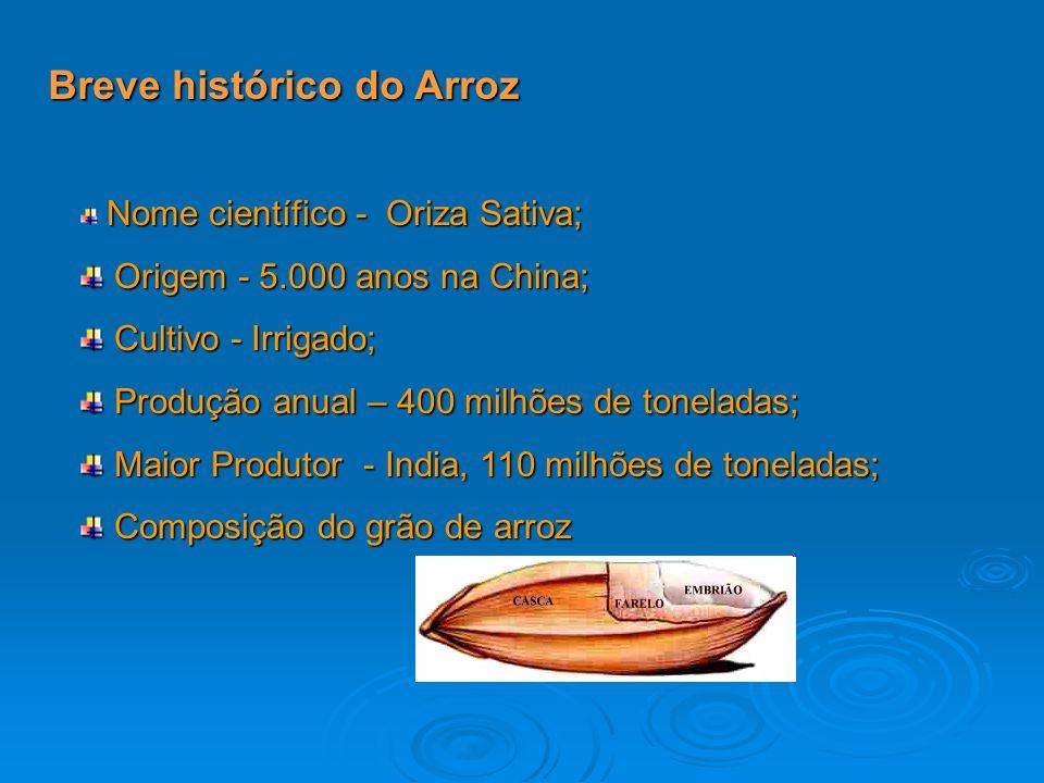 Breve histórico do Arroz Nome científico - Oriza Sativa; Origem - 5.000 anos na China; Origem - 5.000 anos na China; Cultivo - Irrigado; Cultivo - Irr