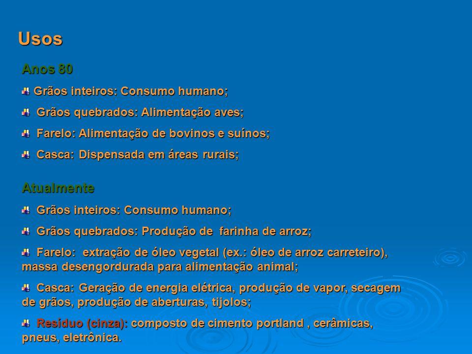 Usos Anos 80 Grãos inteiros: Consumo humano; Grãos inteiros: Consumo humano; Grãos quebrados: Alimentação aves; Grãos quebrados: Alimentação aves; Far