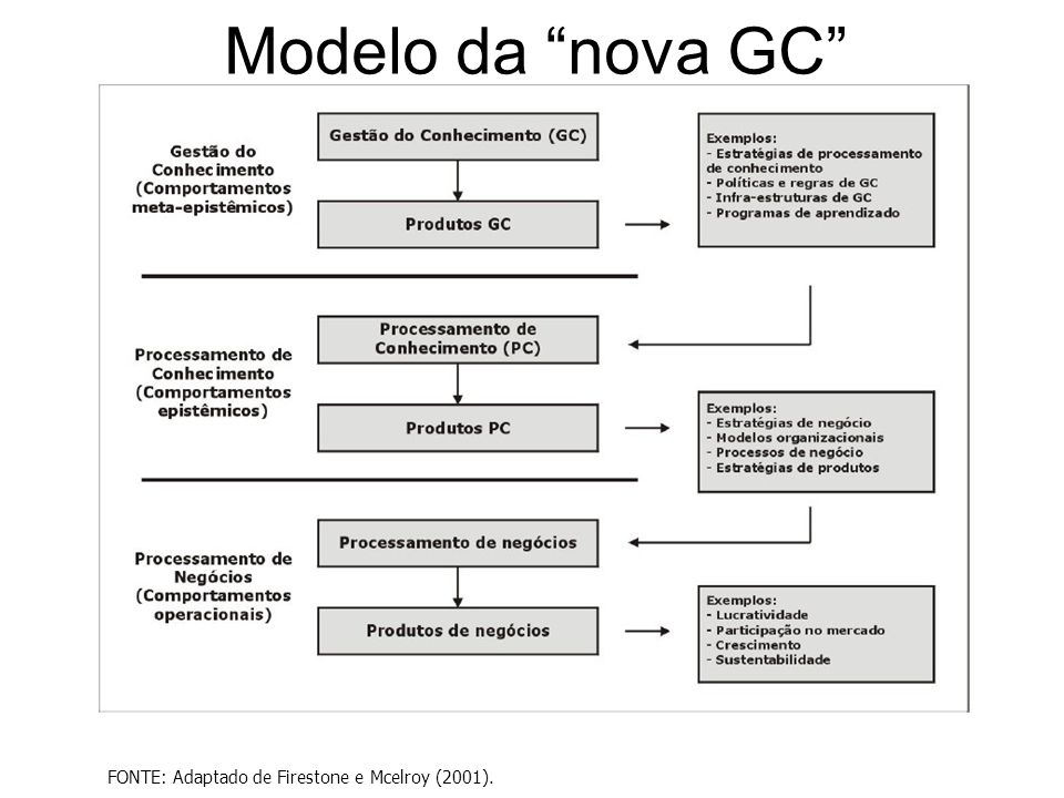 """Modelo da """"nova GC"""" FONTE: Adaptado de Firestone e Mcelroy (2001)."""