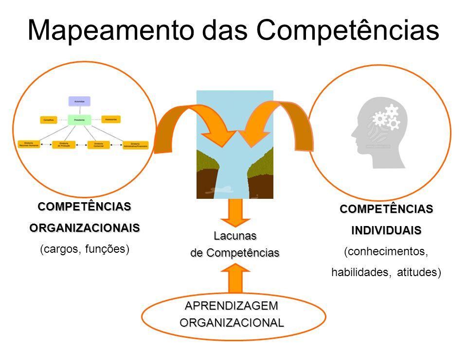 Mapeamento das Competências Lacunas de Competências COMPETÊNCIASORGANIZACIONAIS (cargos, funções) COMPETÊNCIASINDIVIDUAIS (conhecimentos, habilidades,