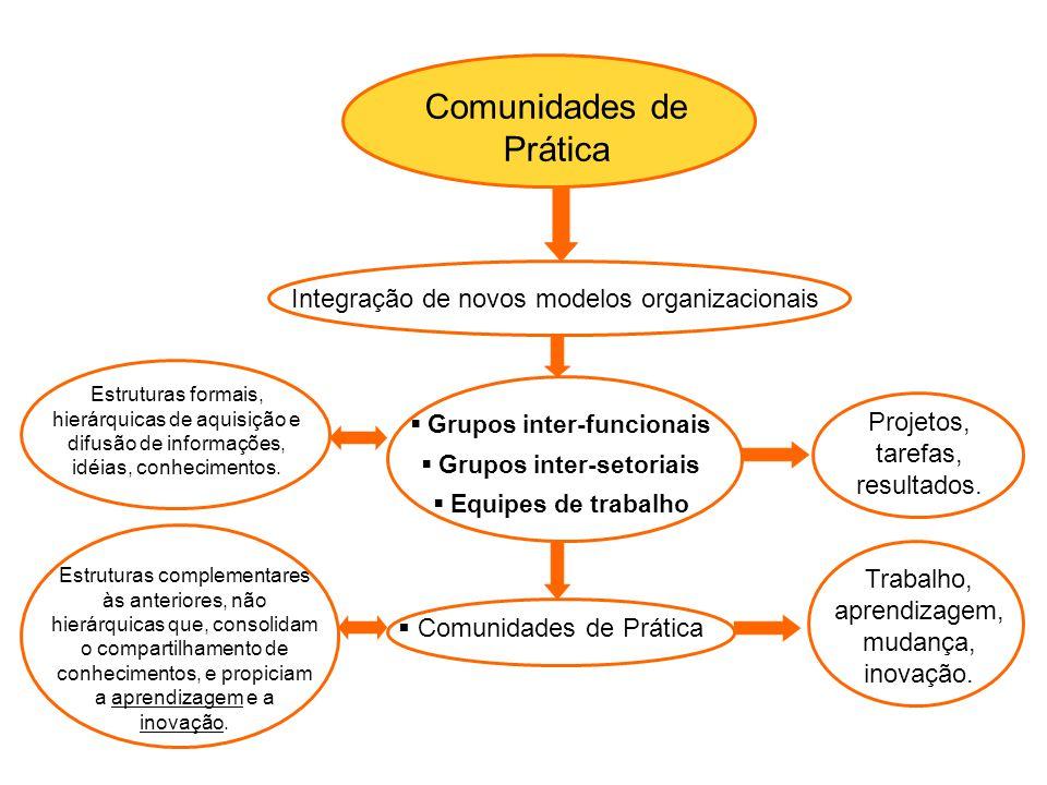 Integração de novos modelos organizacionais  Grupos inter-funcionais  Grupos inter-setoriais  Equipes de trabalho  Comunidades de Prática Projetos