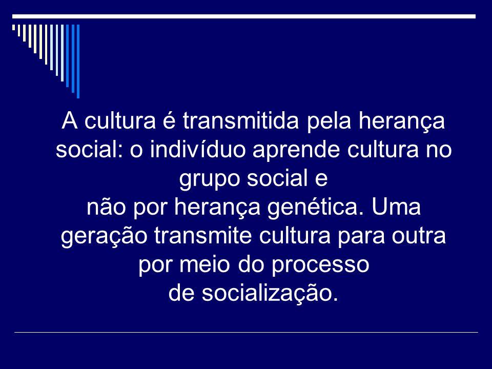 Cultura e Sociedade Para Hoebel e Frost, a sociedade e a cultura não são uma coisa só.