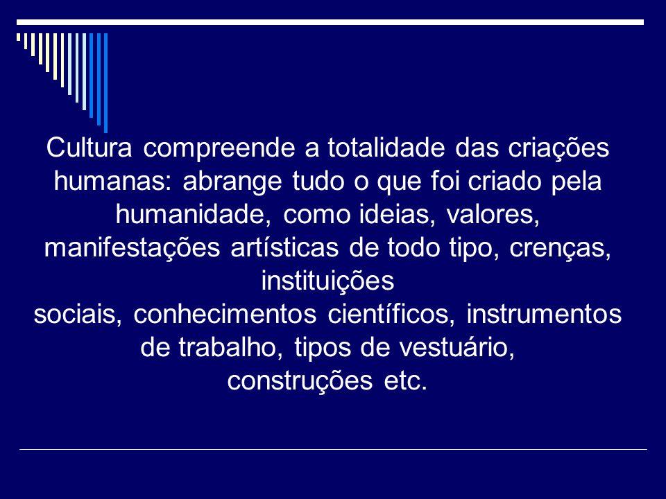 3- Padrões culturais – resulta do agrupamento de complexos culturais de um interesse ou tema central do qual derivam o seu significado.