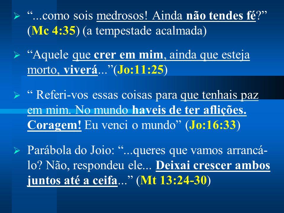""" """"...como sois medrosos! Ainda não tendes fé?"""" (Mc 4:35) (a tempestade acalmada)  """"Aquele que crer em mim, ainda que esteja morto, viverá...""""(Jo:11:"""