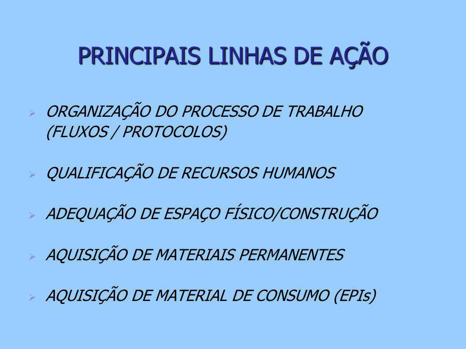 PRINCIPAIS LINHAS DE AÇÃO   ORGANIZAÇÃO DO PROCESSO DE TRABALHO (FLUXOS / PROTOCOLOS)   QUALIFICAÇÃO DE RECURSOS HUMANOS   ADEQUAÇÃO DE ESPAÇO FÍSICO/CONSTRUÇÃO   AQUISIÇÃO DE MATERIAIS PERMANENTES   AQUISIÇÃO DE MATERIAL DE CONSUMO (EPIs)