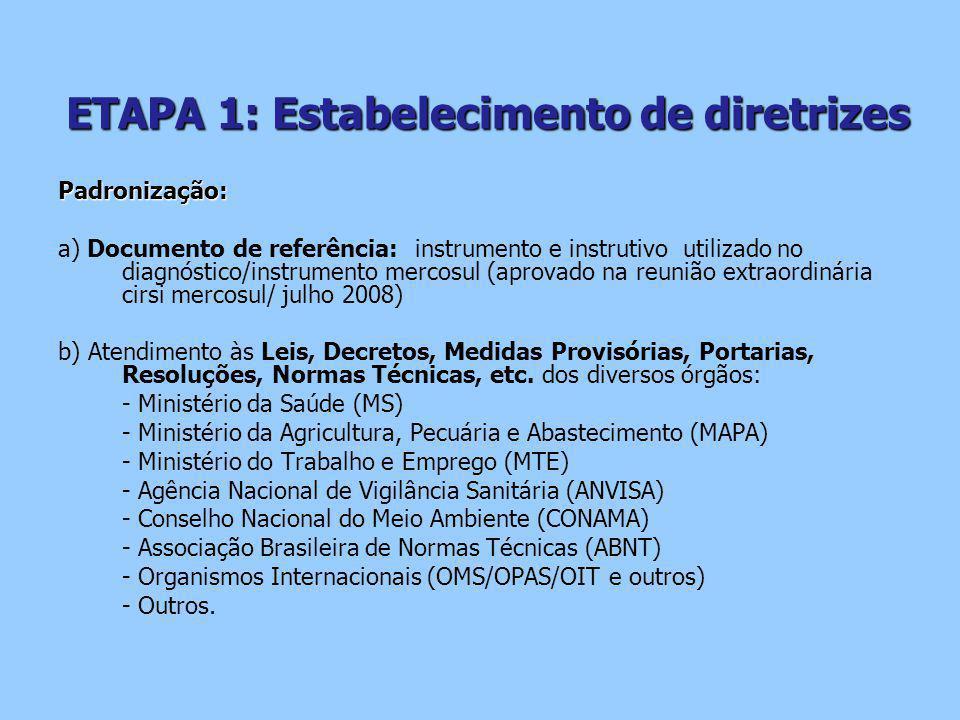 ETAPA 1: Estabelecimento de diretrizes Padronização: a) Documento de referência: instrumento e instrutivo utilizado no diagnóstico/instrumento mercosul (aprovado na reunião extraordinária cirsi mercosul/ julho 2008) b) Atendimento às Leis, Decretos, Medidas Provisórias, Portarias, Resoluções, Normas Técnicas, etc.