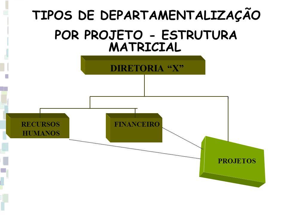 """TIPOS DE DEPARTAMENTALIZAÇÃO POR PROJETO - ESTRUTURA MATRICIAL DIRETORIA """"X"""" PROJETOS RECURSOS HUMANOS FINANCEIRO"""