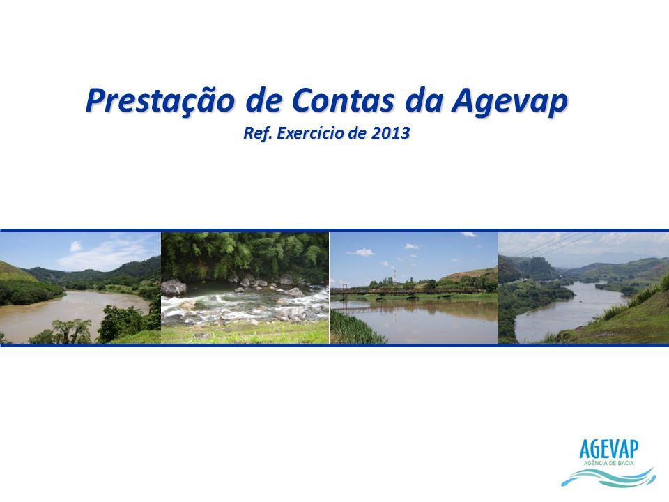 Prestação de Contas da Agevap Ref. Exercício de 2013
