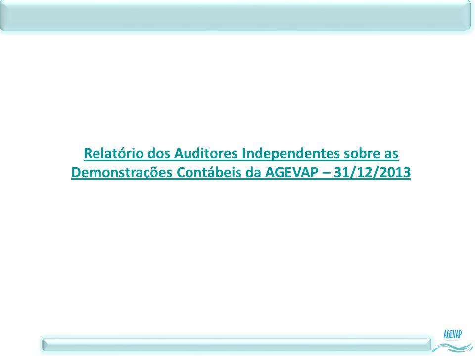 Relatório dos Auditores Independentes sobre as Demonstrações Contábeis da AGEVAP – 31/12/2013
