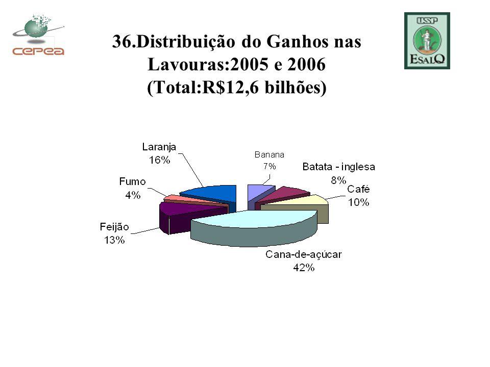 36.Distribuição do Ganhos nas Lavouras:2005 e 2006 (Total:R$12,6 bilhões)