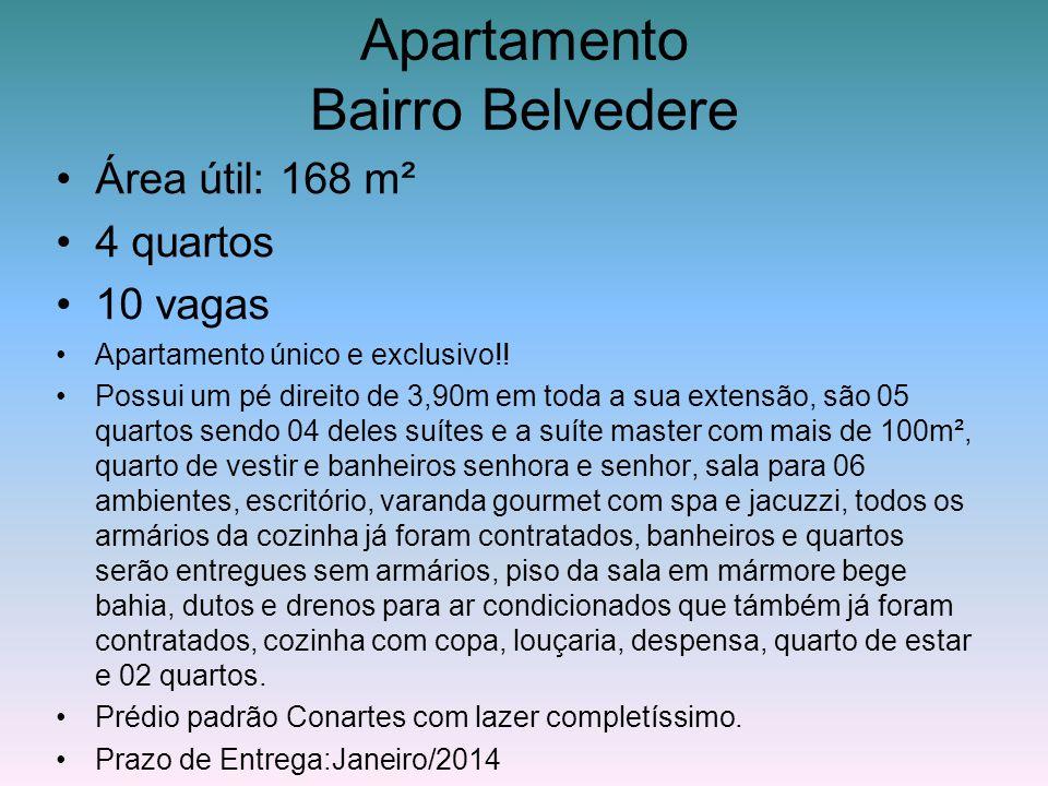 Apartamento Bairro Belvedere Área útil: 168 m² 4 quartos 10 vagas Apartamento único e exclusivo!! Possui um pé direito de 3,90m em toda a sua extensão