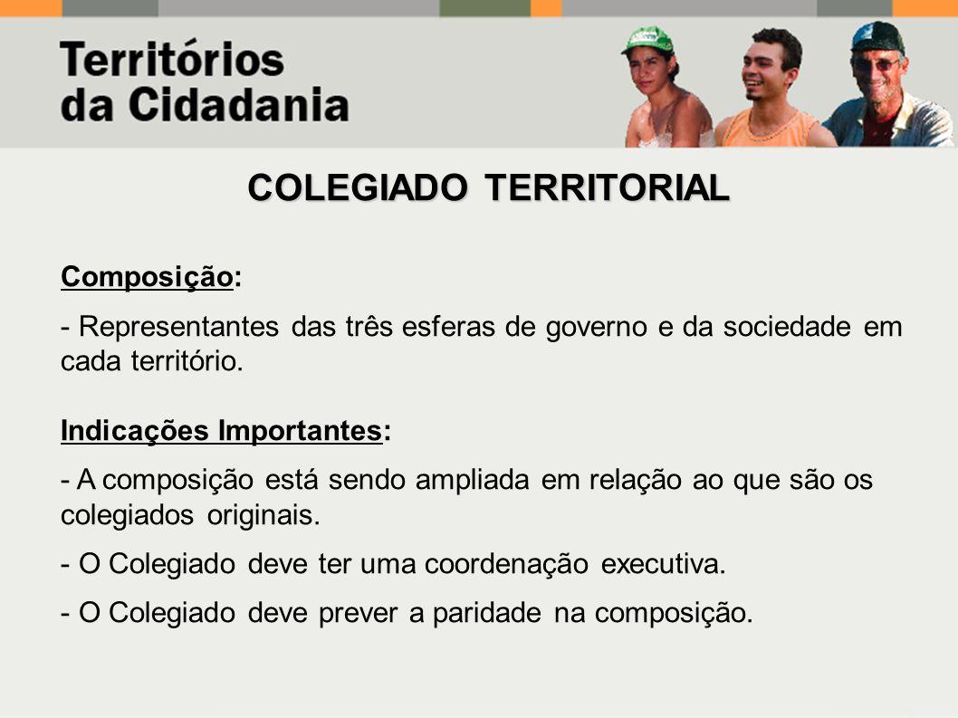 Composição: - Representantes das três esferas de governo e da sociedade em cada território.