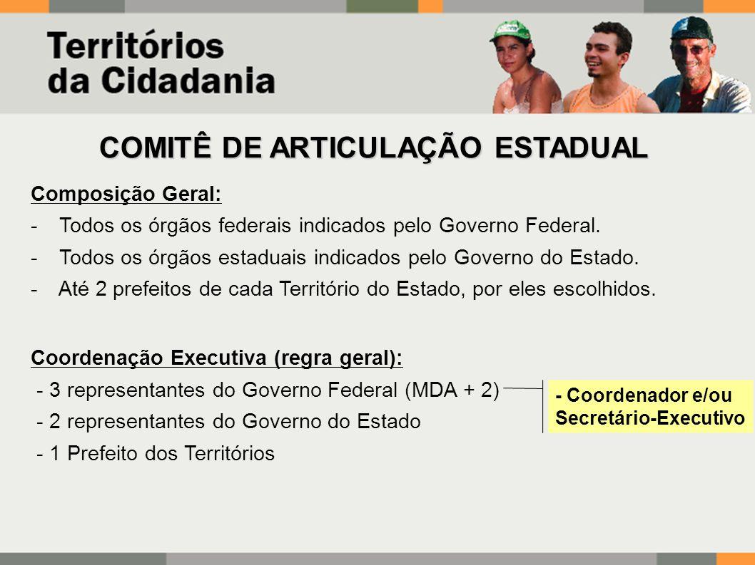 COMITÊ DE ARTICULAÇÃO ESTADUAL Composição Geral: - Todos os órgãos federais indicados pelo Governo Federal.