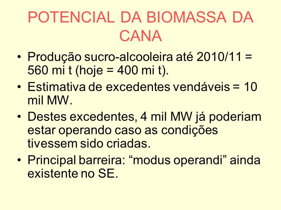 POTENCIAL DA BIOMASSA DA CANA Produção sucro-alcooleira até 2010/11 = 560 mi t (hoje = 400 mi t). Estimativa de excedentes vendáveis = 10 mil MW. Dest