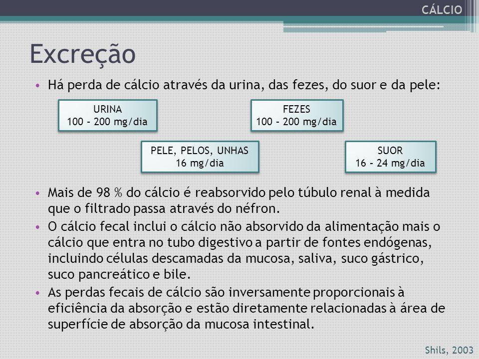 Excreção Há perda de cálcio através da urina, das fezes, do suor e da pele: Mais de 98 % do cálcio é reabsorvido pelo túbulo renal à medida que o filt
