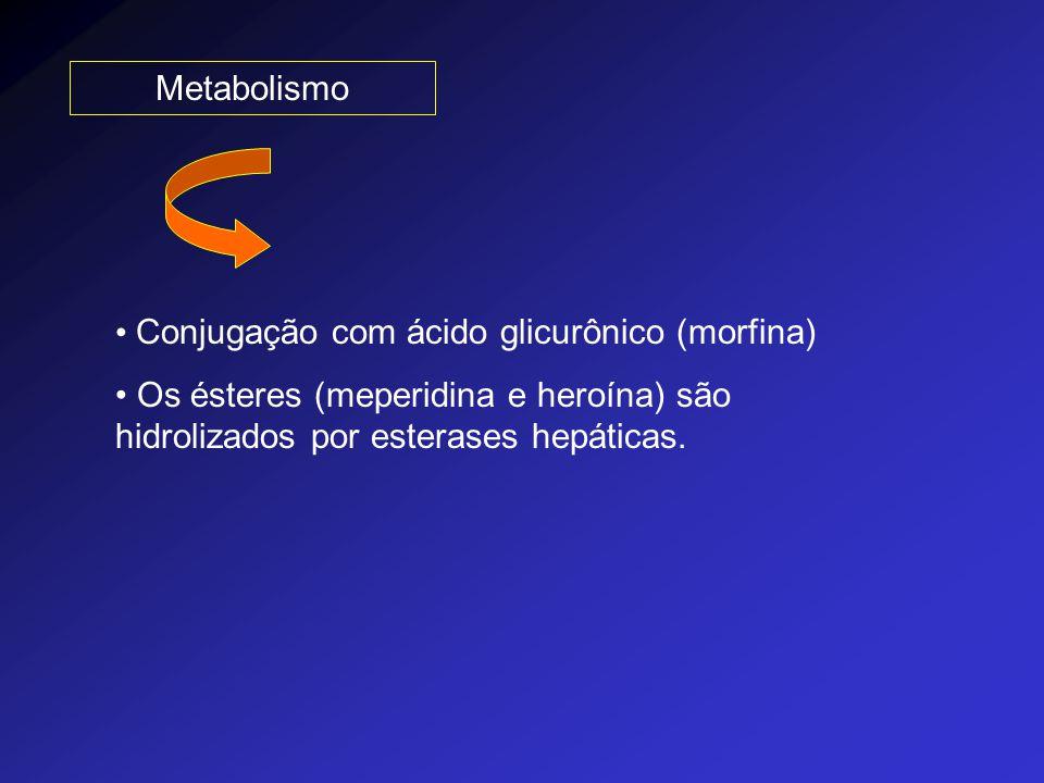 Metabolismo Conjugação com ácido glicurônico (morfina) Os ésteres (meperidina e heroína) são hidrolizados por esterases hepáticas.