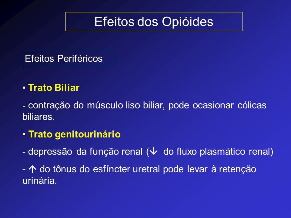 Efeitos dos Opióides Efeitos Periféricos Trato Biliar - contração do músculo liso biliar, pode ocasionar cólicas biliares. Trato genitourinário - depr
