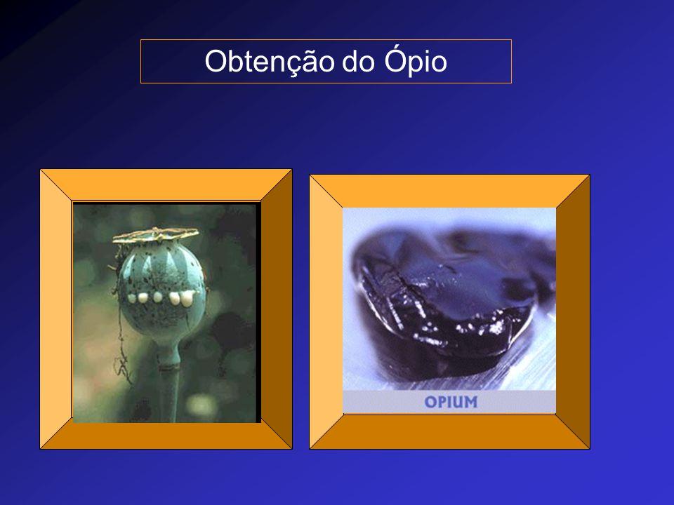 Uso dos opióides O tratamento da dor é essencial para a prática médica Há inúmeras situações em que é necessário proporcionar analgesia antes do diagnóstico definitivo.