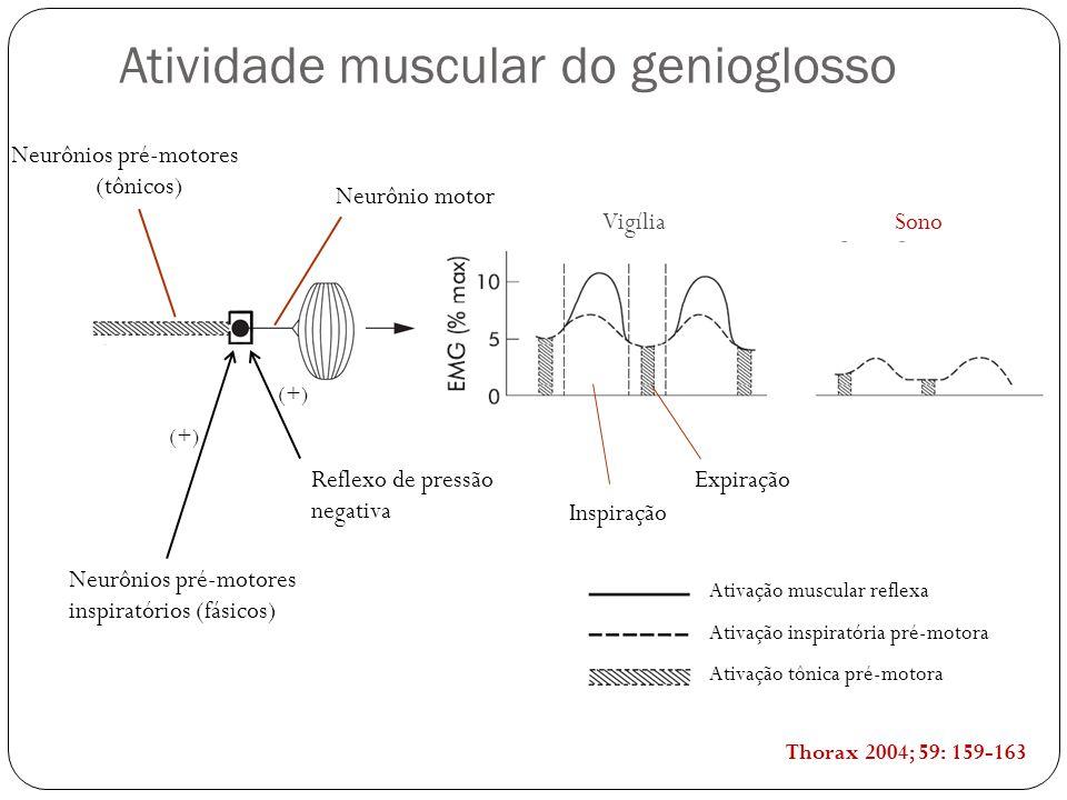 Neurônio motor Neurônios pré-motores (tônicos) Reflexo de pressão negativa Neurônios pré-motores inspiratórios (fásicos) VigíliaSono (+) Expiração Inspiração Ativação muscular reflexa Ativação inspiratória pré-motora Ativação tônica pré-motora Thorax 2004; 59: 159-163 Atividade muscular do genioglosso
