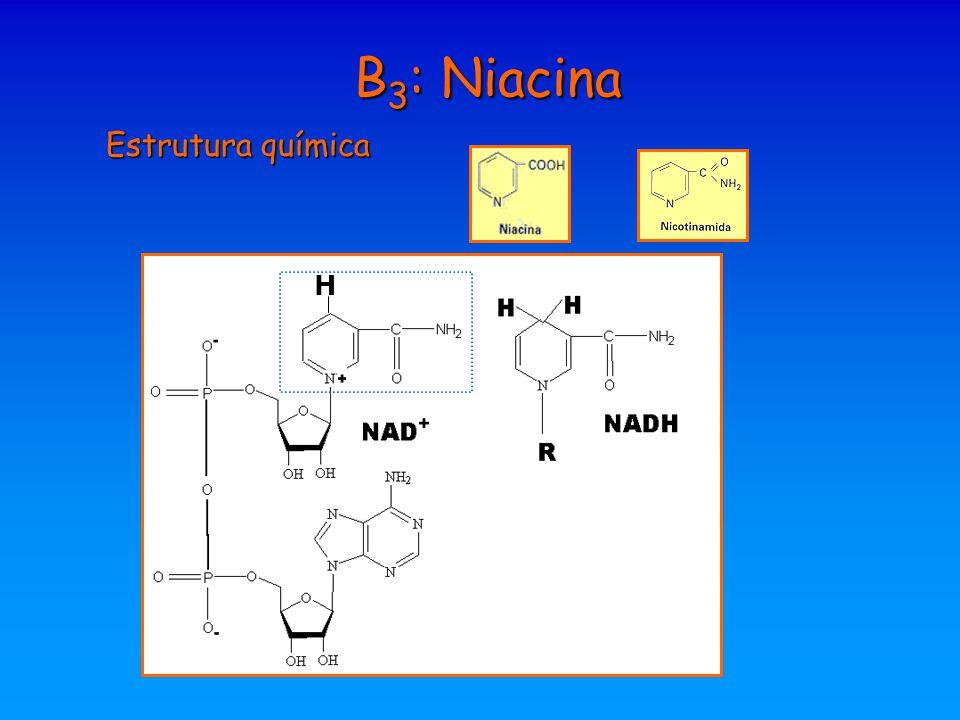 B 3 : Niacina Estrutura química H