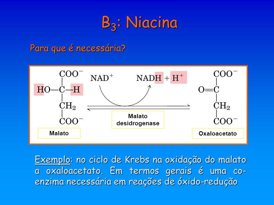 B 3 : Niacina Para que é necessária? Malato desidrogenase Oxaloacetato Exemplo: no ciclo de Krebs na oxidação do malato a oxaloacetato. Em termos gera