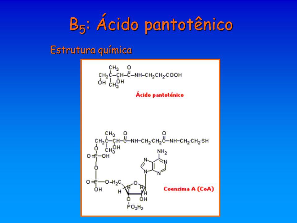 B 5 : Ácido pantotênico Estrutura química