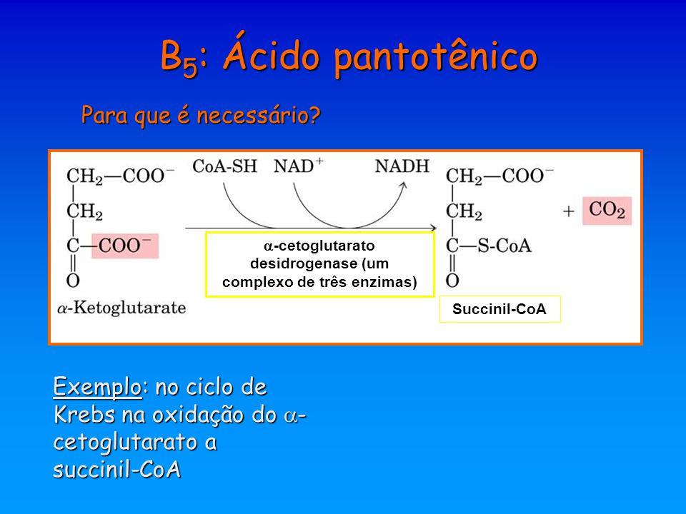 B 5 : Ácido pantotênico Para que é necessário? Succinil-CoA Exemplo: no ciclo de Krebs na oxidação do  - cetoglutarato a succinil-CoA  -cetoglutarat