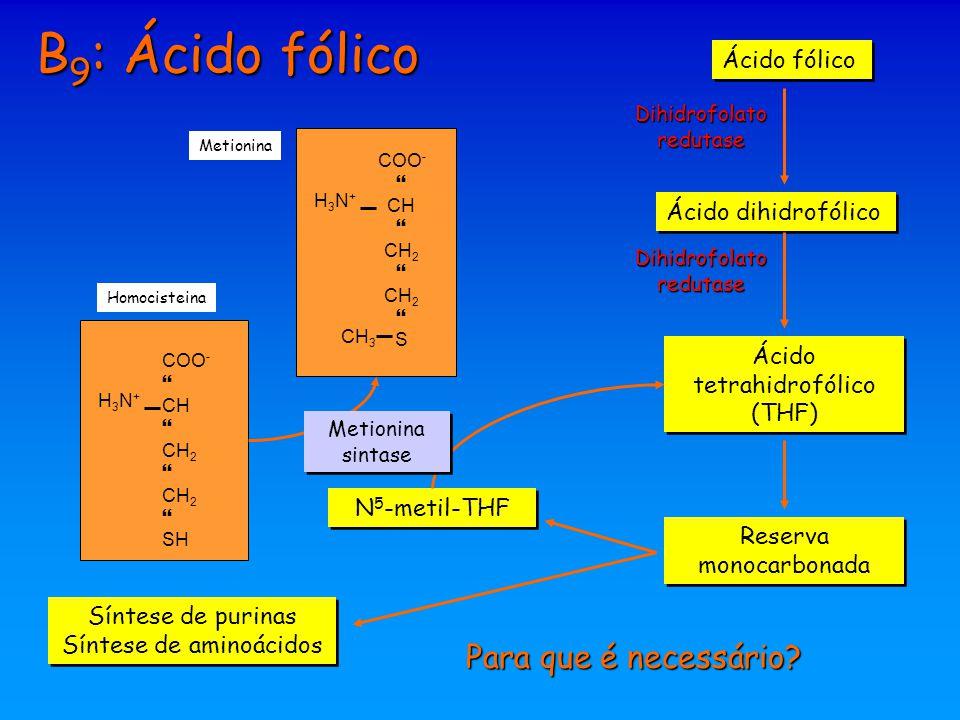 B 9 : Ácido fólico Para que é necessário? Ácido fólico Ácido dihidrofólico Ácido tetrahidrofólico (THF) Dihidrofolato redutase Reserva monocarbonada S