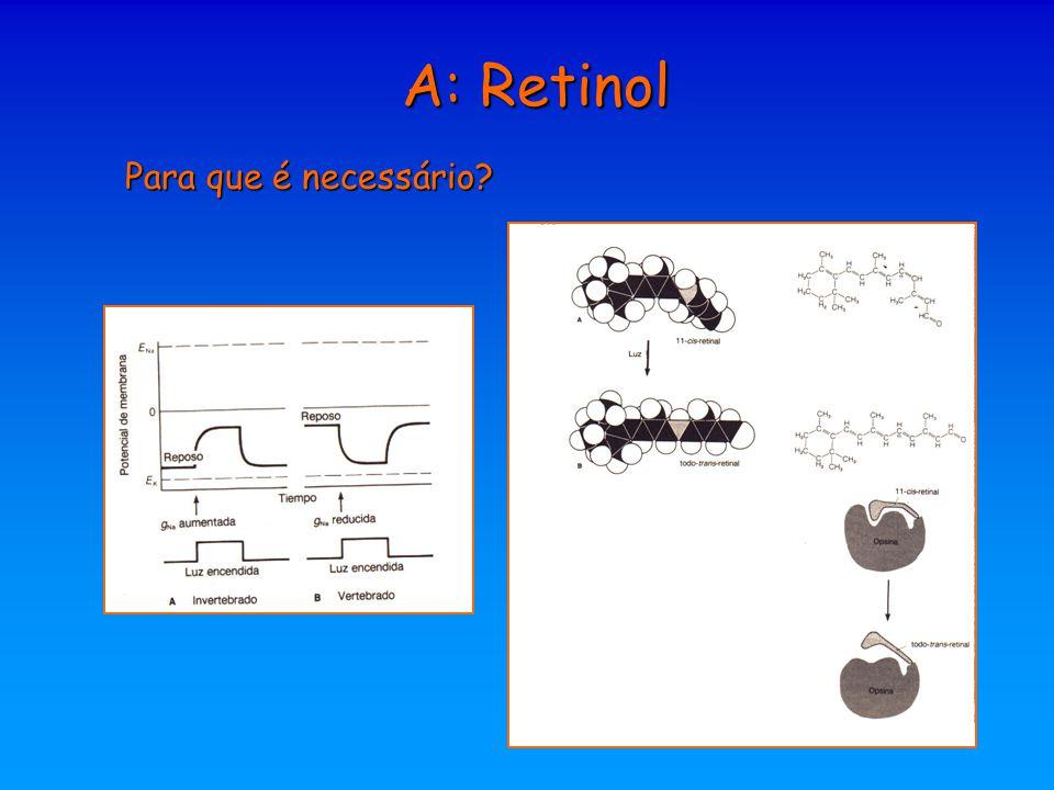 A: Retinol Para que é necessário?