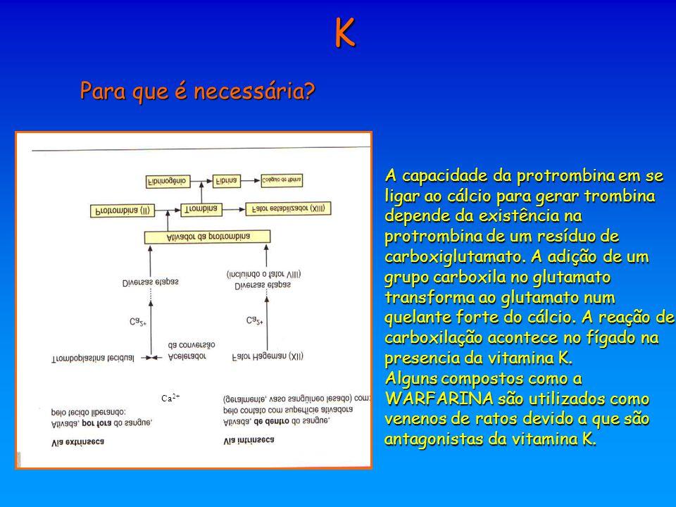 K Para que é necessária? A capacidade da protrombina em se ligar ao cálcio para gerar trombina depende da existência na protrombina de um resíduo de c