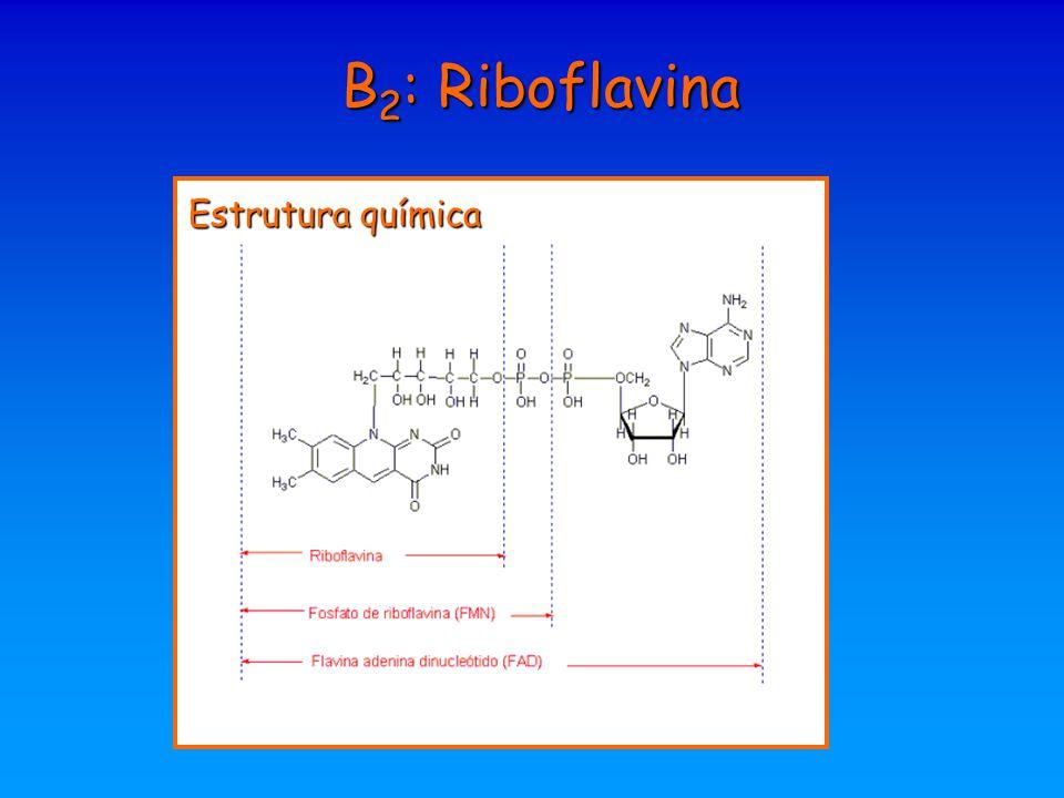 B 2 : Riboflavina Estrutura química