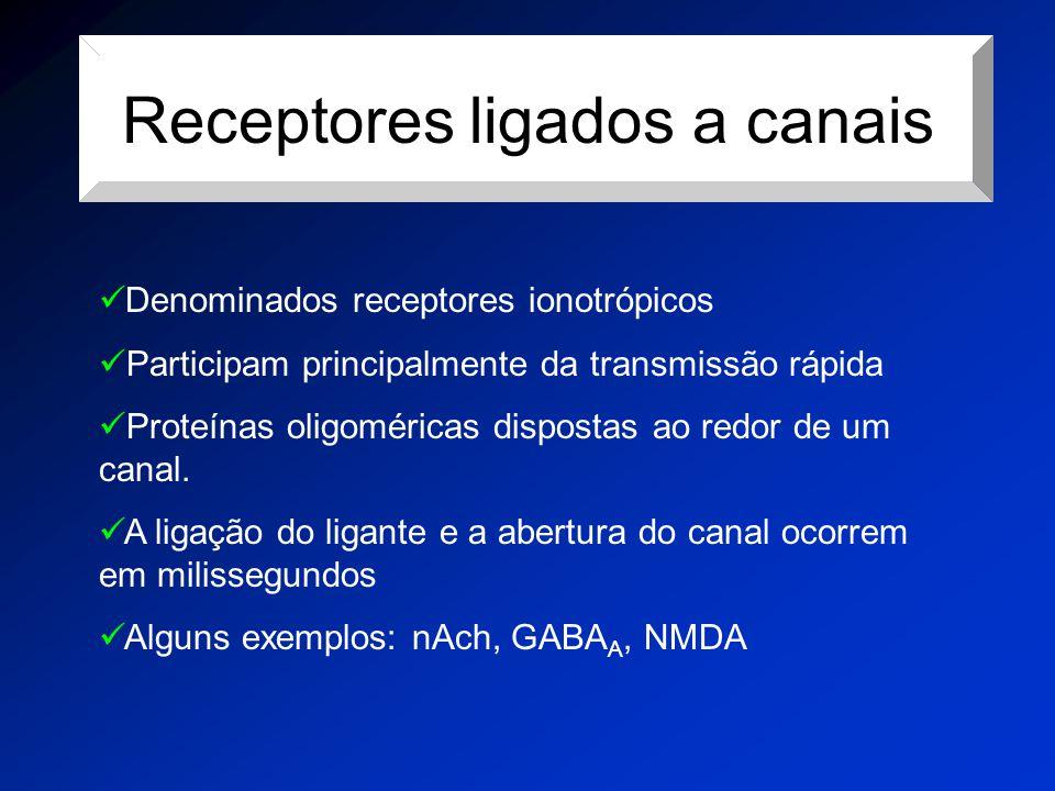 Receptores ligados a canais Denominados receptores ionotrópicos Participam principalmente da transmissão rápida Proteínas oligoméricas dispostas ao re