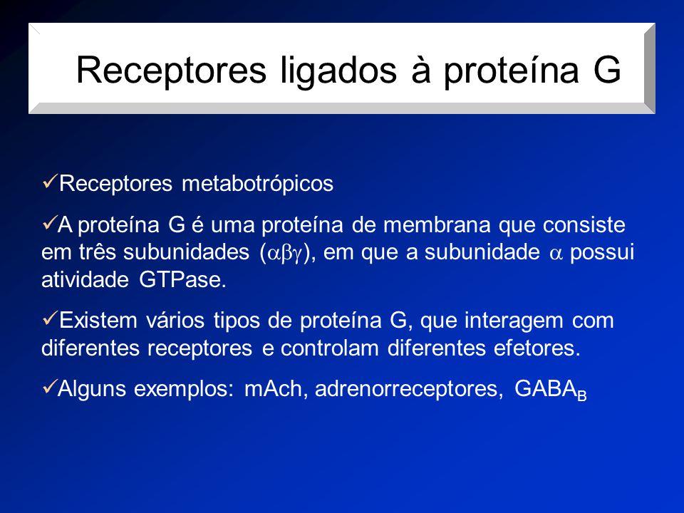 rReceptores ligados à proteína G Receptores metabotrópicos A proteína G é uma proteína de membrana que consiste em três subunidades (  ), em que a