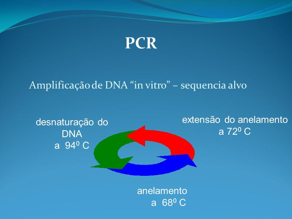 """PCR Amplificação de DNA """"in vitro"""" – sequencia alvo desnaturação do DNA a 94 0 C anelamento a 68 0 C extensão do anelamento a 72 0 C"""