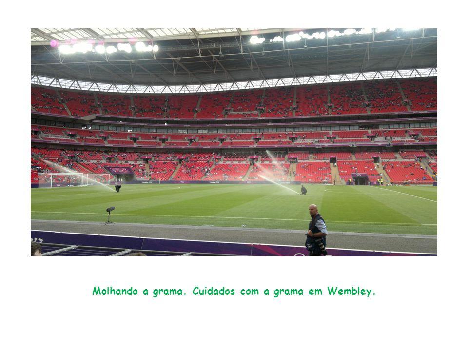 Molhando a grama. Cuidados com a grama em Wembley.
