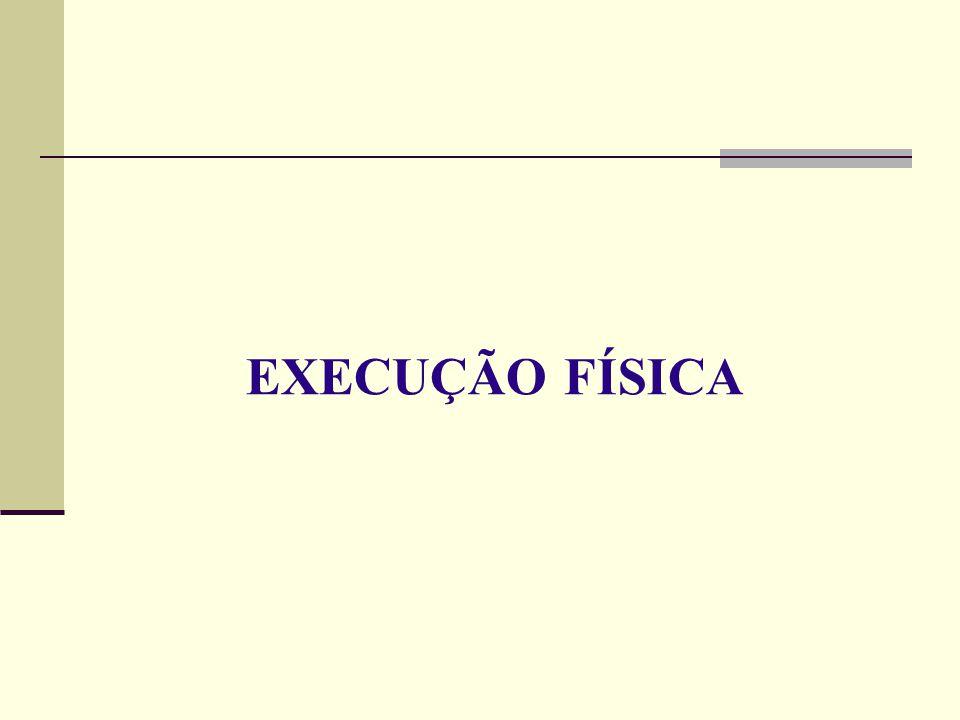 EXECUÇÃO FÍSICA