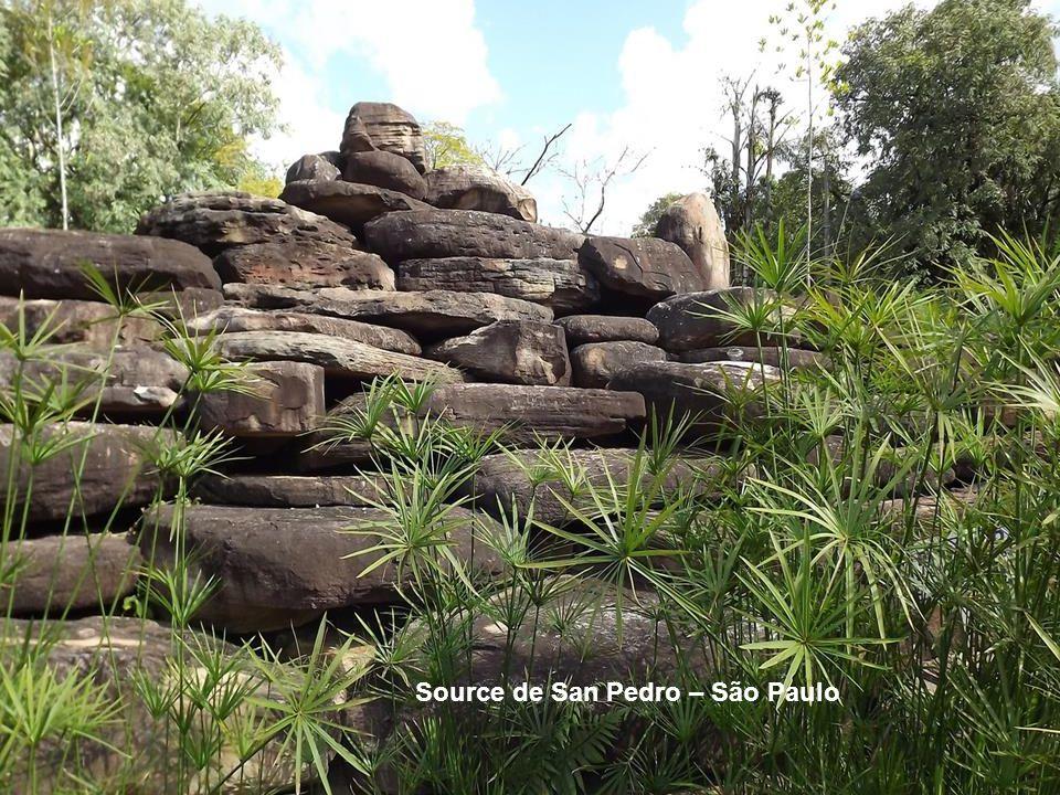 Source de San Pedro – São Paulo