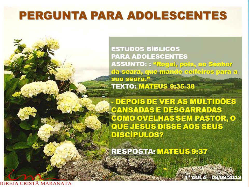 """PERGUNTA PARA ADOLESCENTES ESTUDOS BÍBLICOS PARA ADOLESCENTES : """"Rogai, pois, ao Senhor da seara, que mande ceifeiros para a sua seara."""" ASSUNTO: : """"R"""